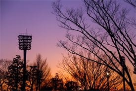 三ツ沢公園の夕焼け