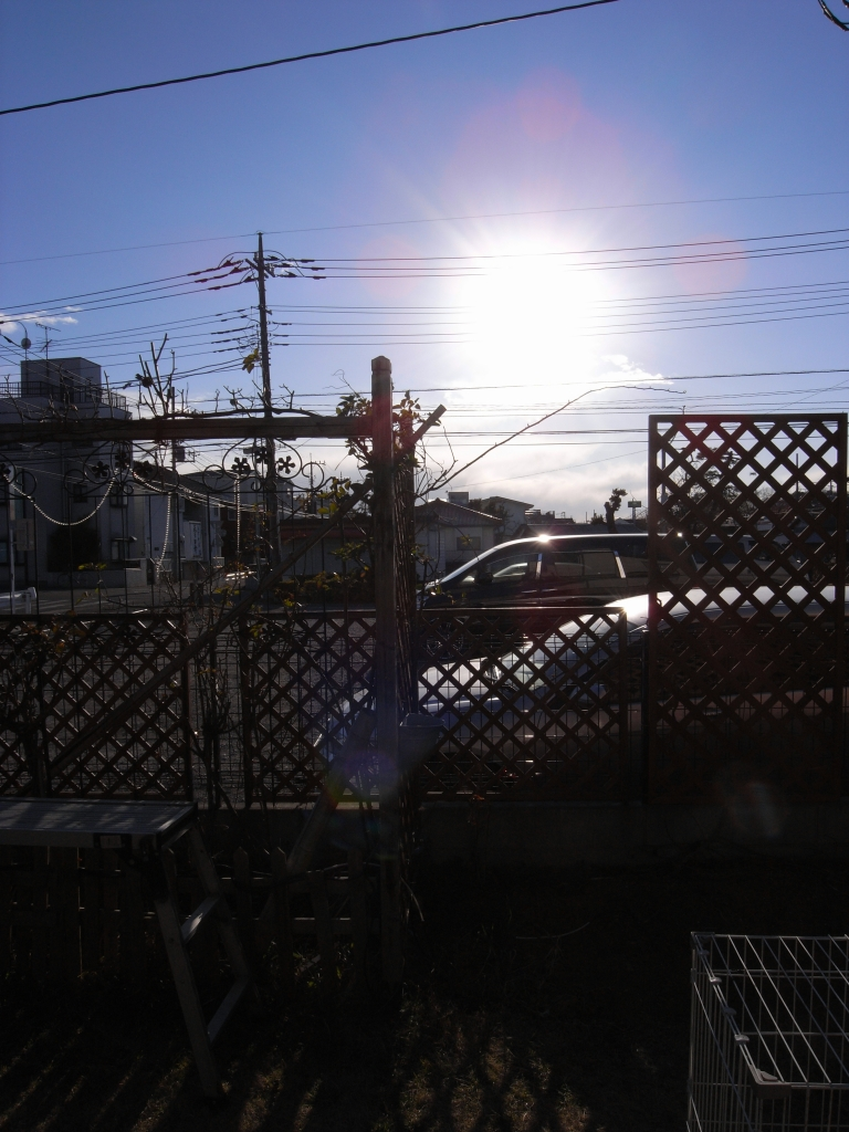 GX100と太陽光