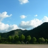SHINRYOKU