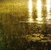 sparkling rain