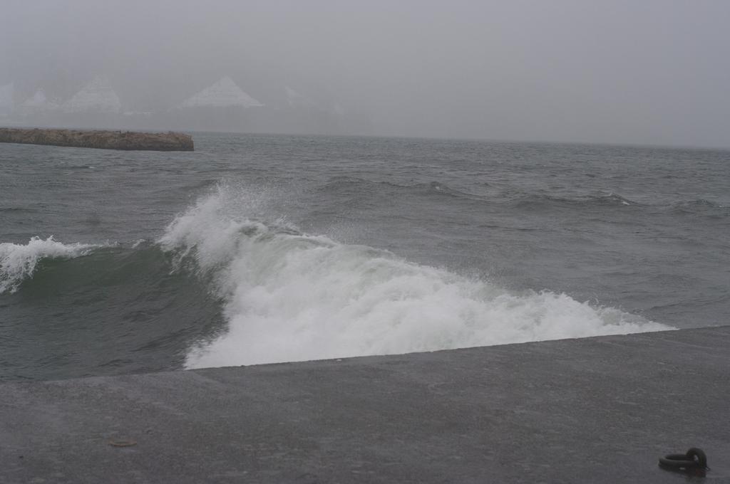 敦賀の海で