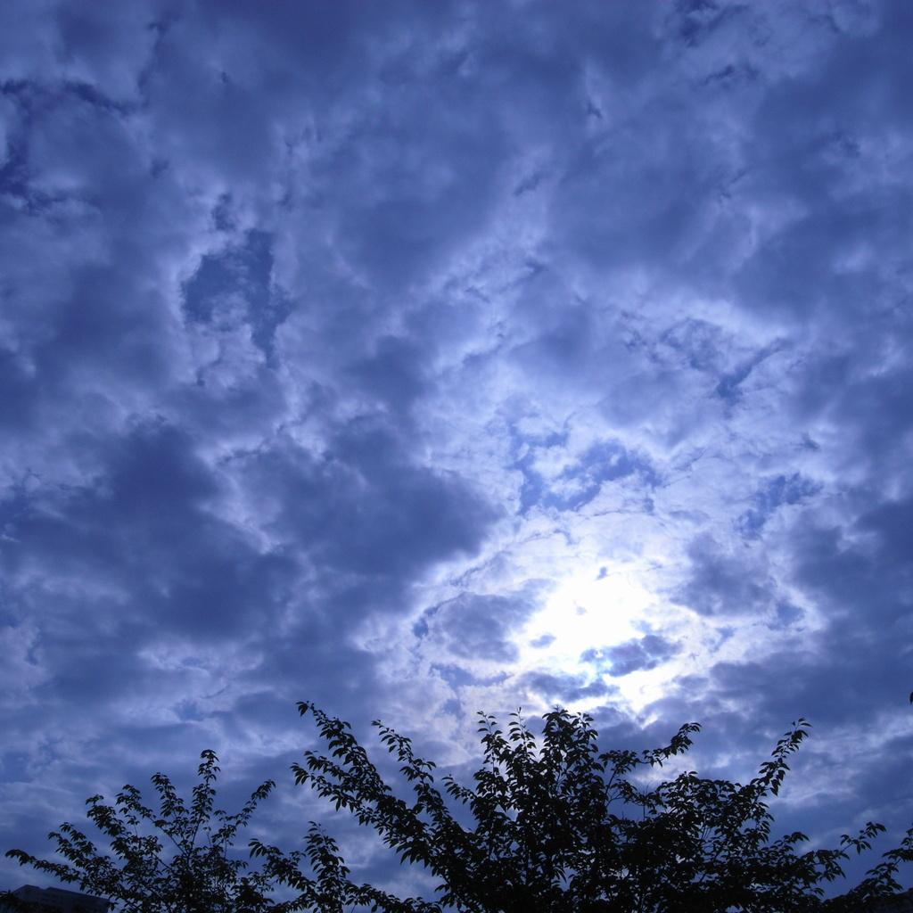 今日の青空2
