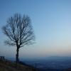 奈良・若草山