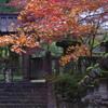 秋の入り口