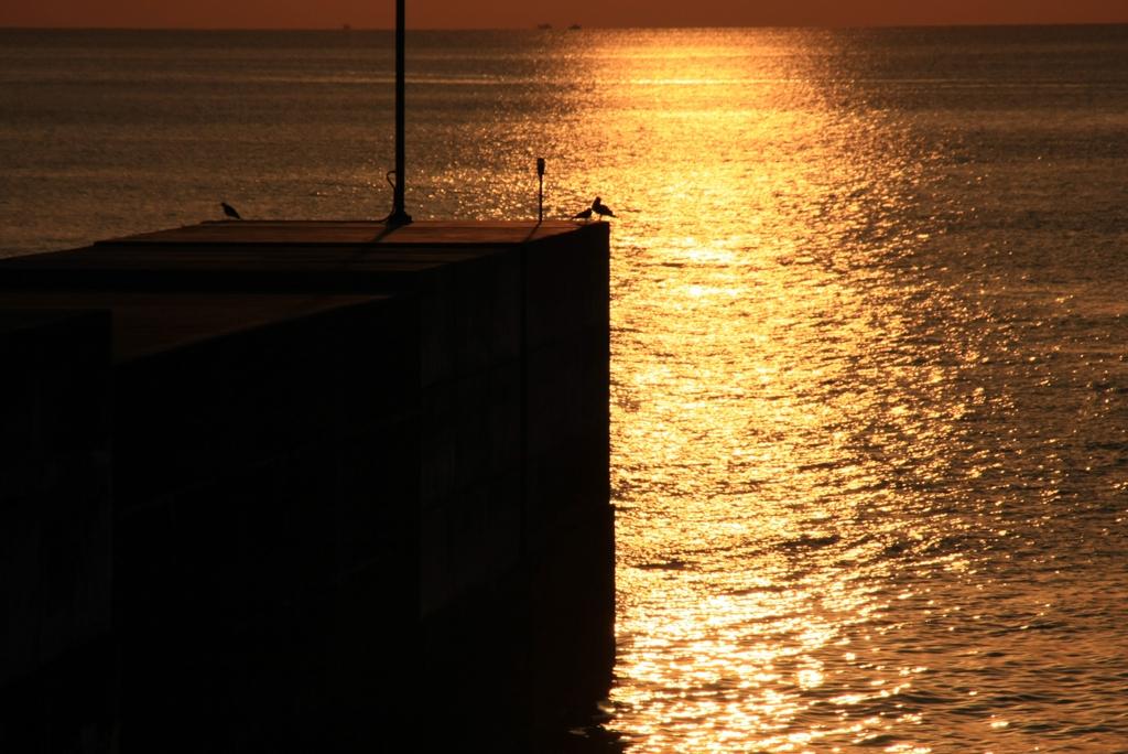 夕日に輝く堤防で