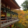 談山神社拝殿の秋