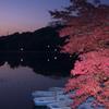 奈良公園 鷺池