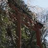 吉野 水分神社
