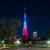 『pray for paris』東京タワートリコロールカラーダイヤモンドヴェール