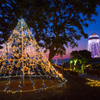 「湘南の宝石」亀ヶ岡広場