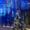 青組のクリスマス