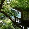 臥龍山荘09