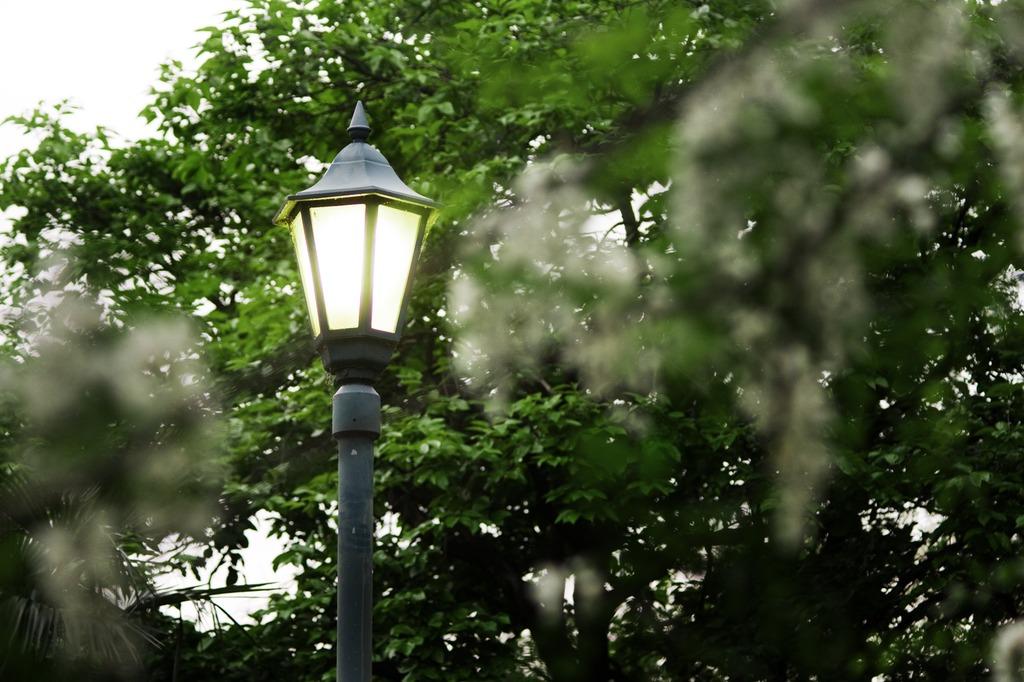 984灯り