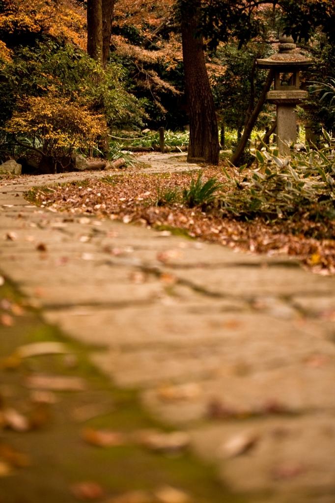 日本の小道