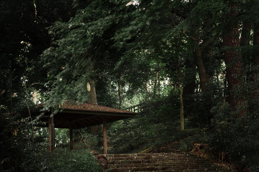 570宝来公園