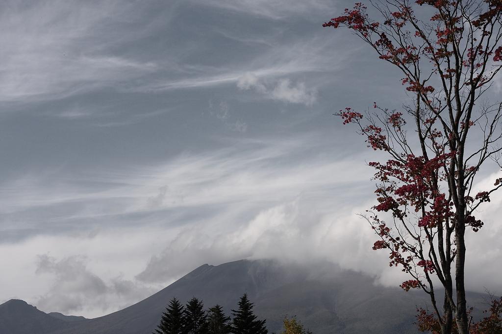 清らかなる秋の景観