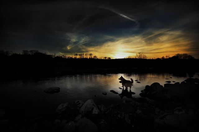 風景・自然写真集
