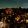 FOURSEASONS HOTEL TOKYO at Chinzan-so