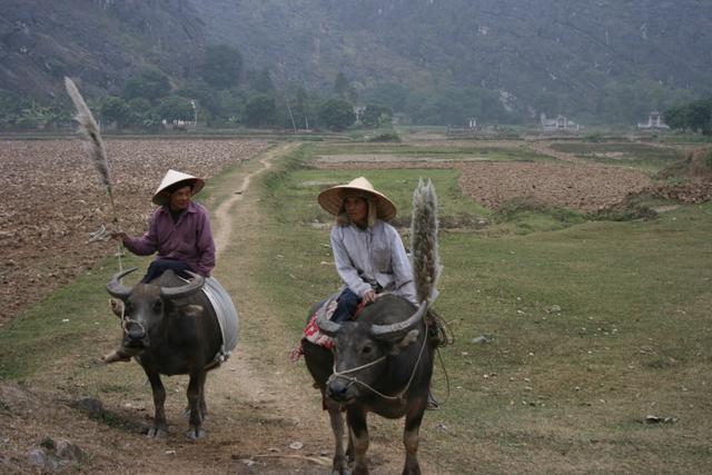 ベトナム ホアルーにて