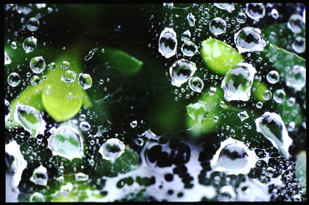 水玉の世界19