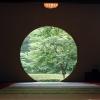 明月院の窓