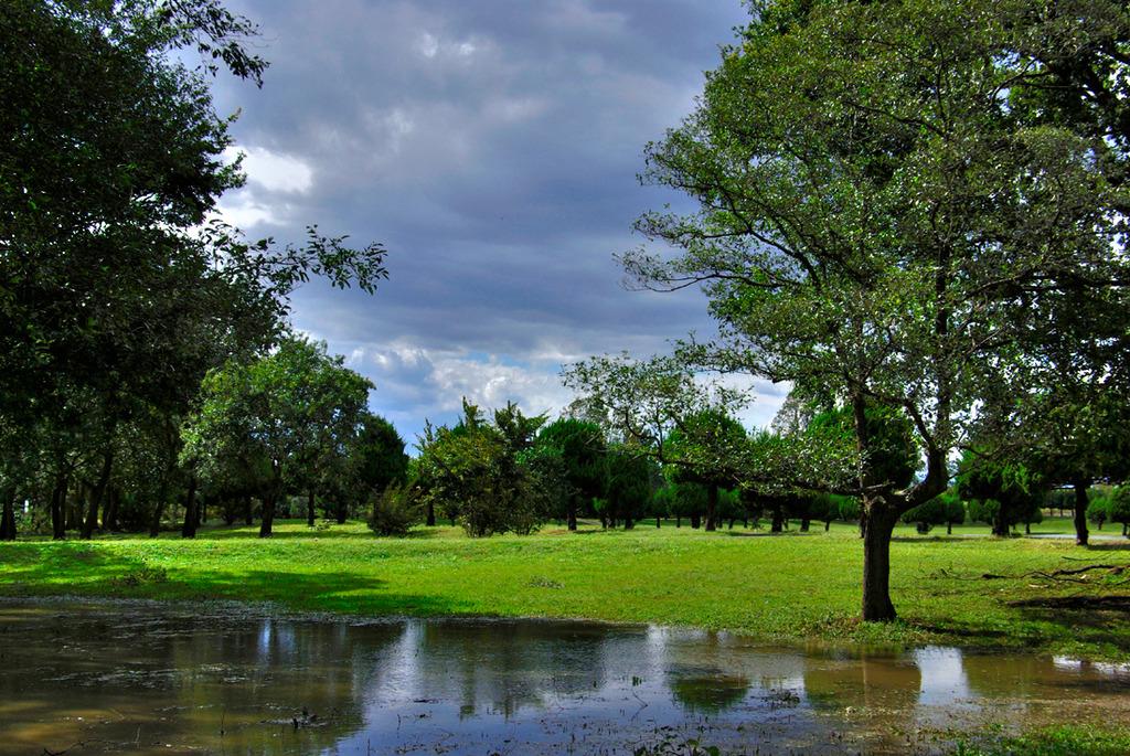 秋が瀬公園