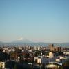 遠目の富士山
