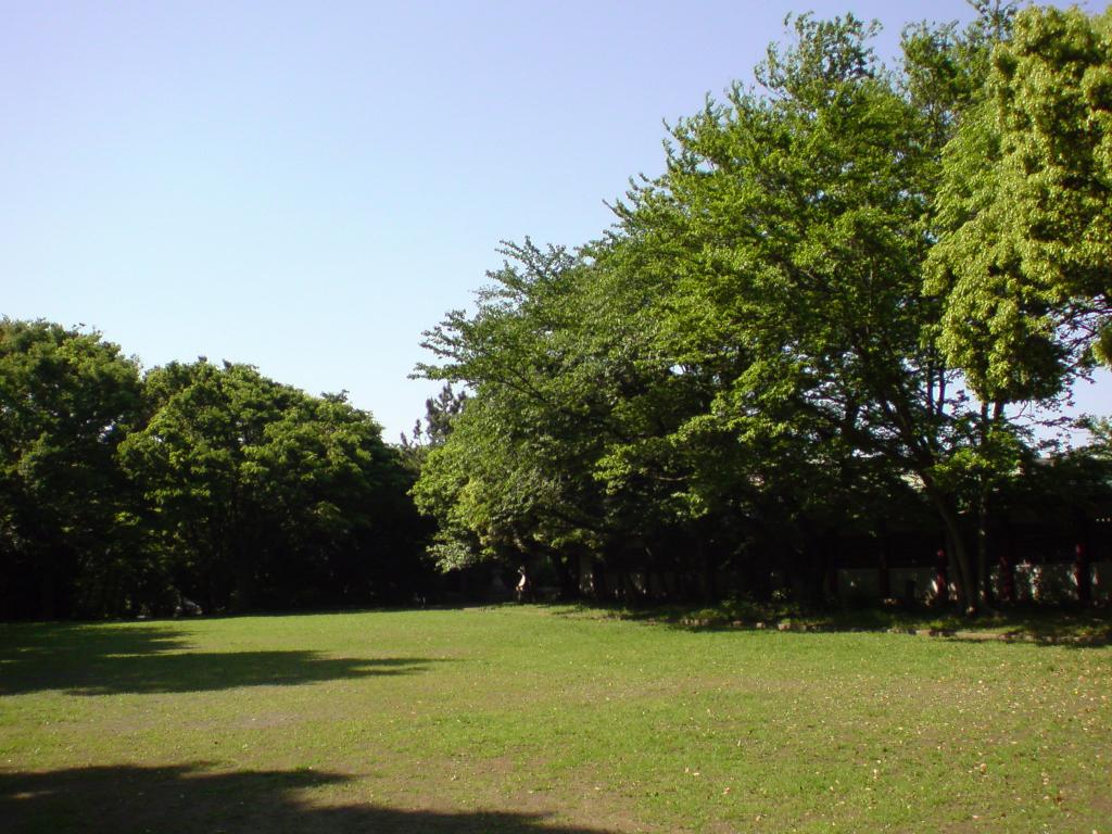 W61Sで公園の緑