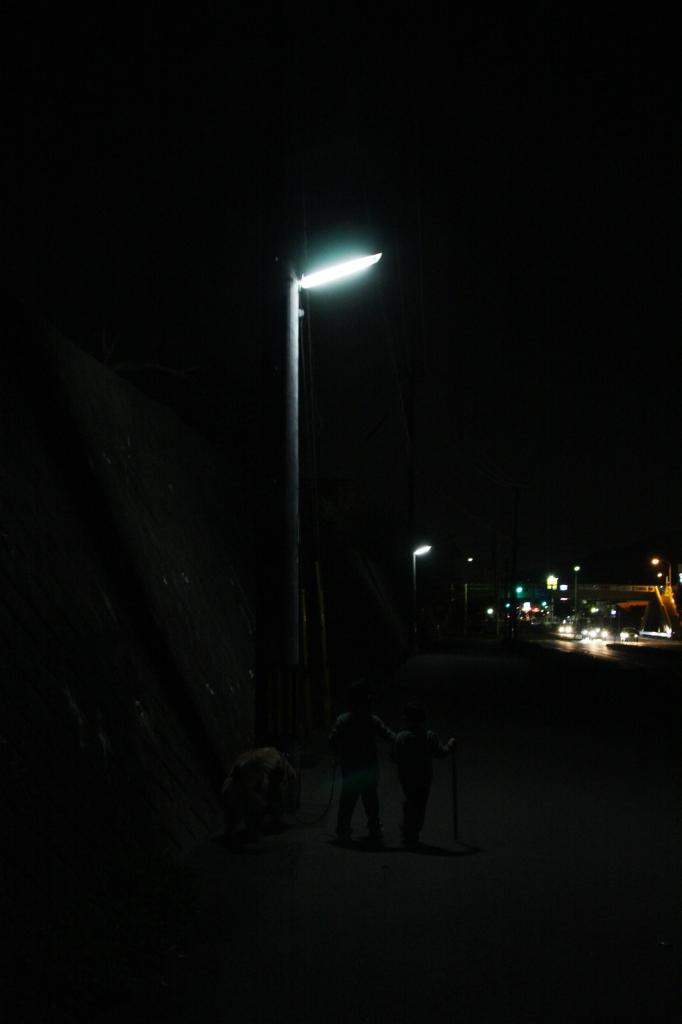 夜道の散歩