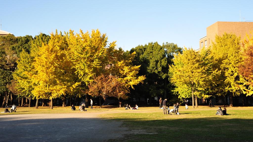 日だまりの公園(HD)
