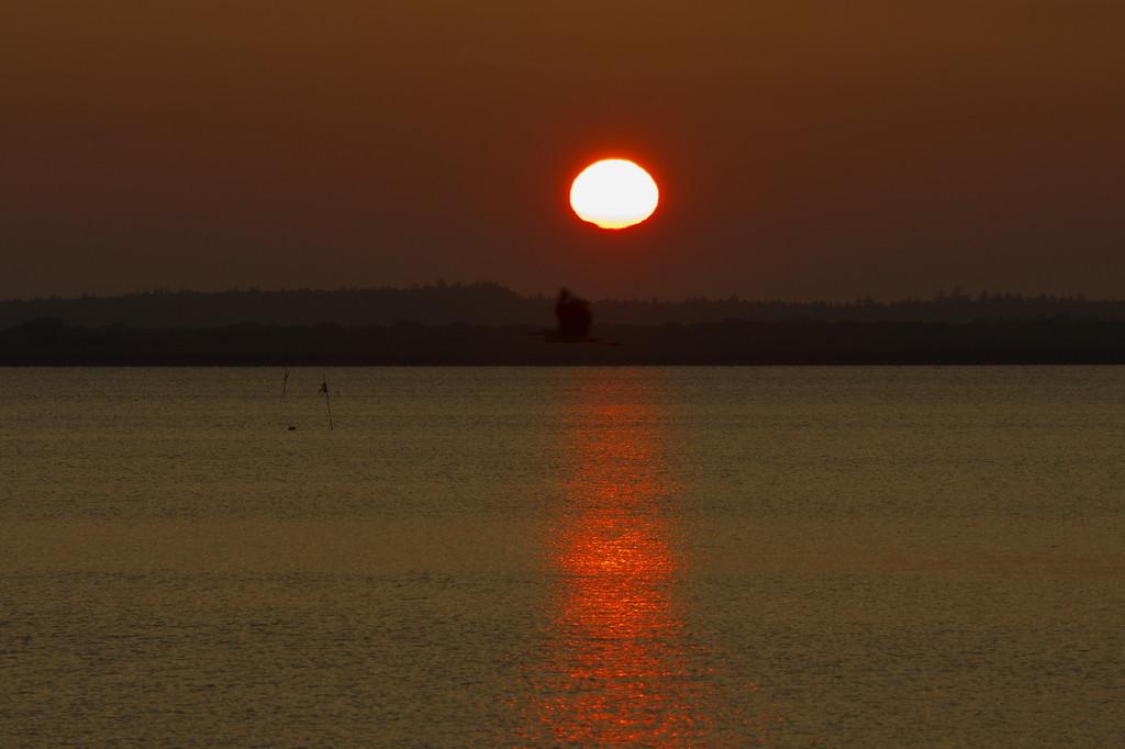 夕陽 パンケ沼