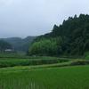 小雨の風景