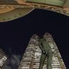 早蕨、夜の都庁前に立つ