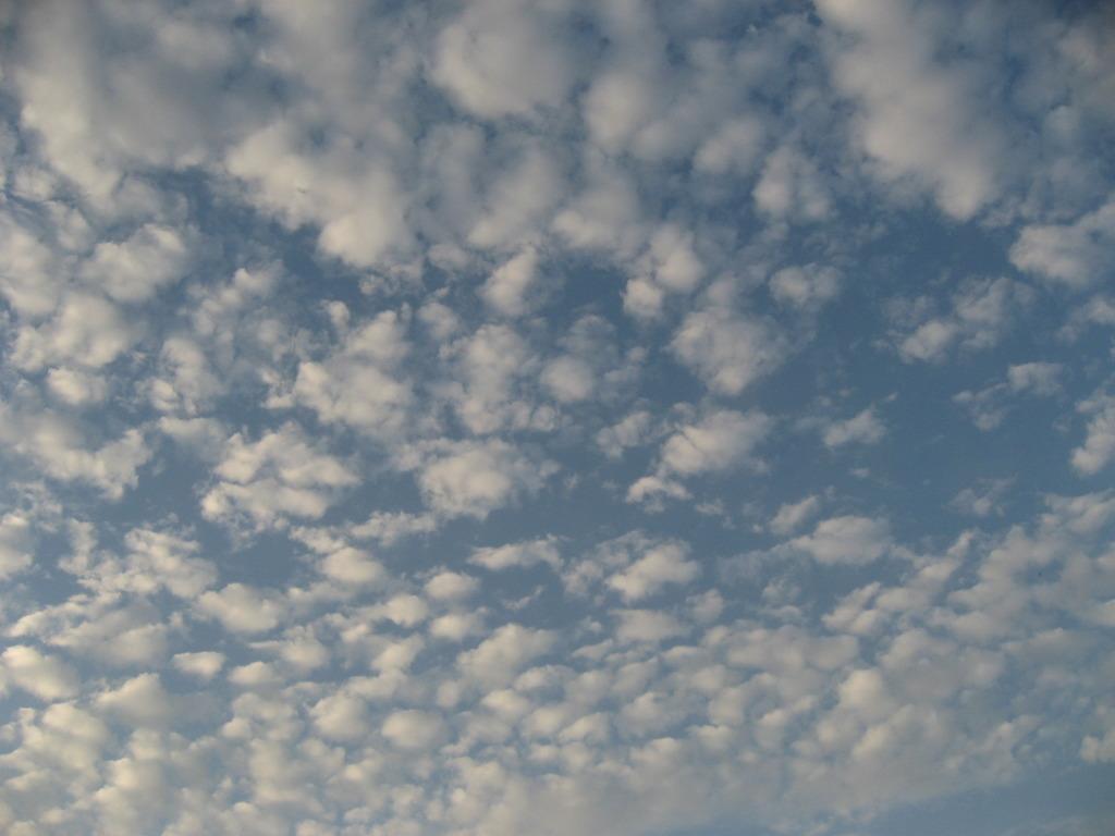 晩秋の空1