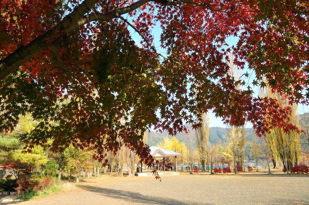 山中湖周辺公園