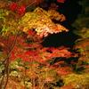 2013年 松雲山荘 紅葉  彩と闇