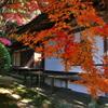 奈良は紅葉巡り3(長岳寺)