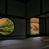京都洛北紅葉巡り4(源光庵2)