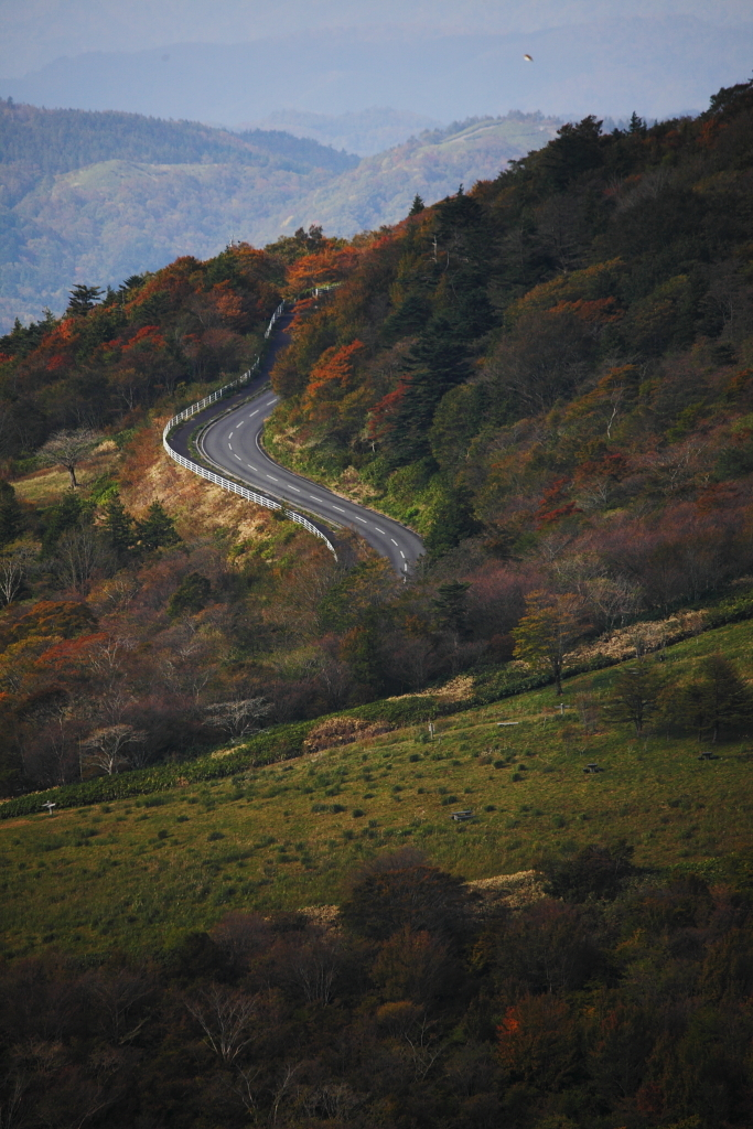 茶臼山高原4