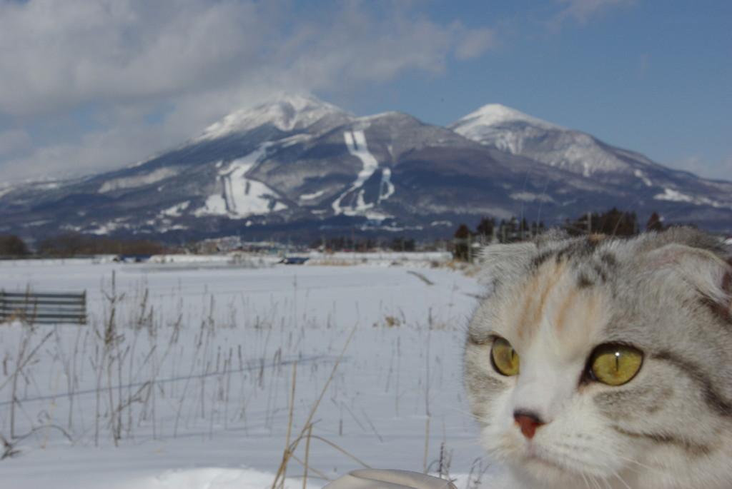 りこのガイド嬢~磐梯山~