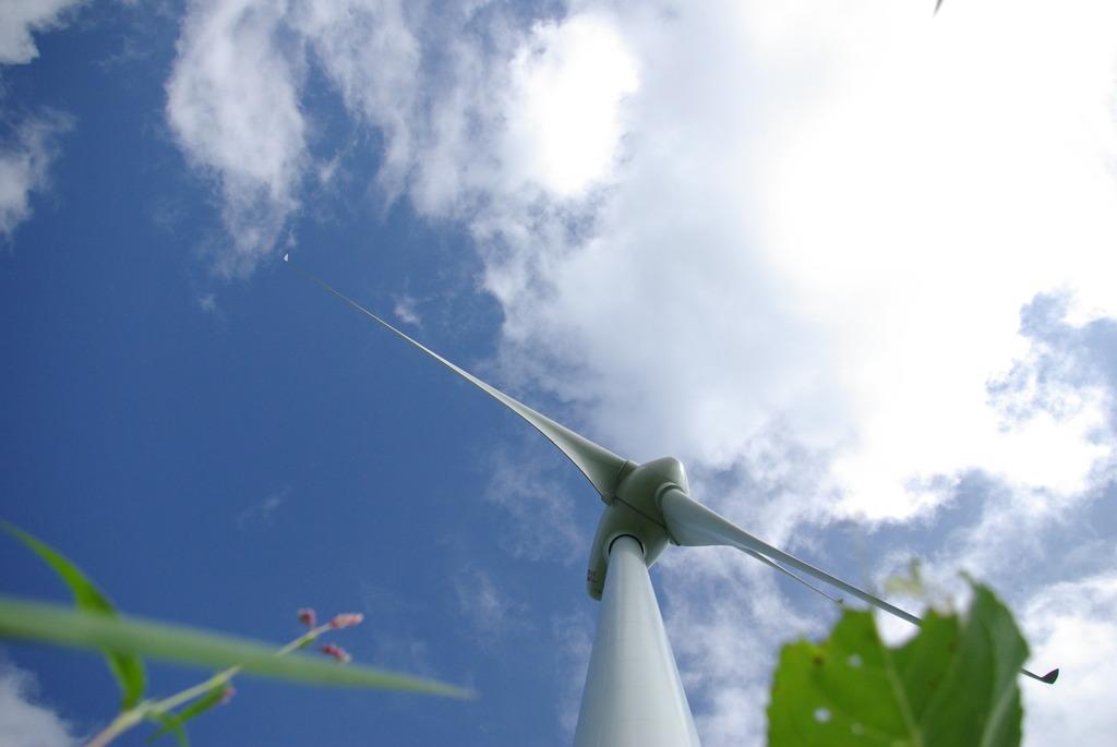 青空と白い風車