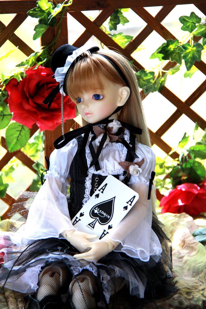 SD少女F22番