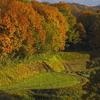 晩秋の棚田