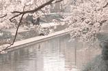 2009年春