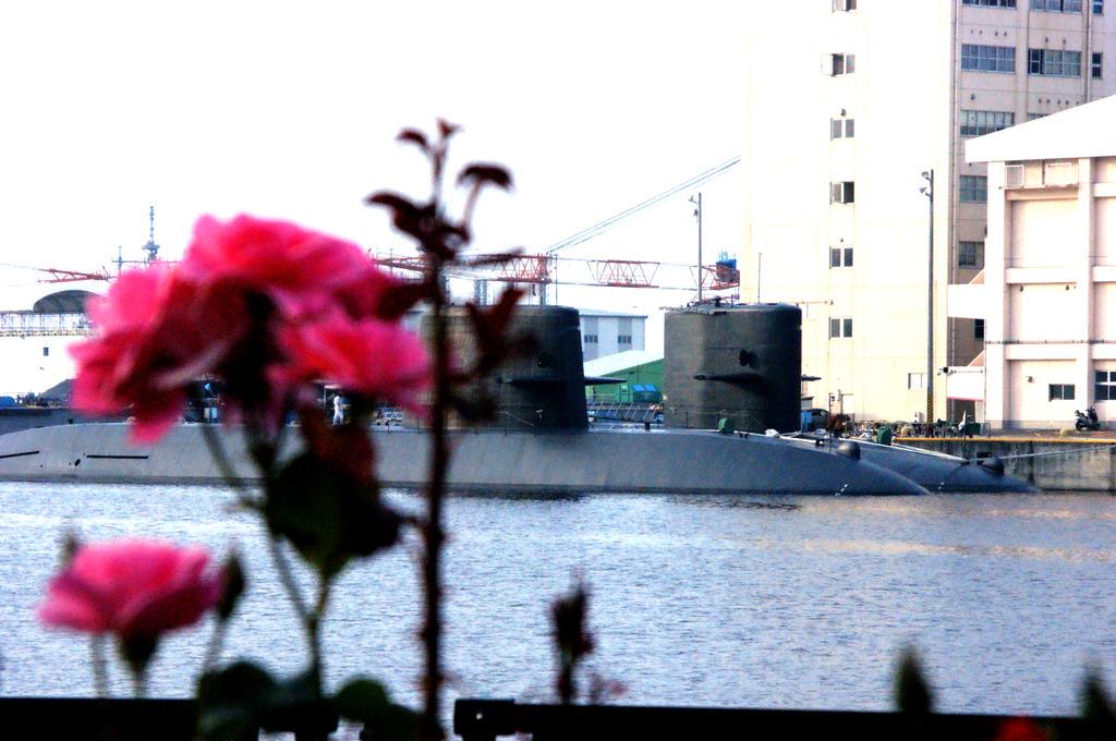 薔薇と潜水艦