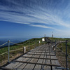 剣山山頂の木道