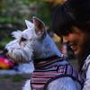 un chien avec une fille