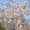 クリーブランド 春