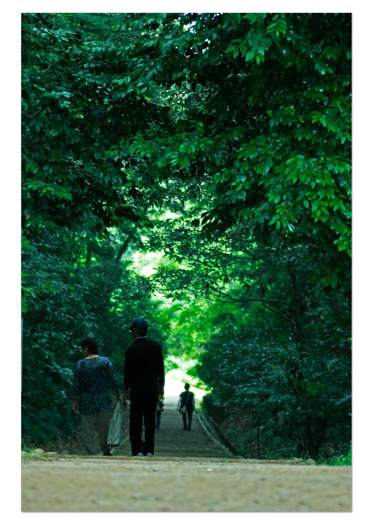父と母 散歩