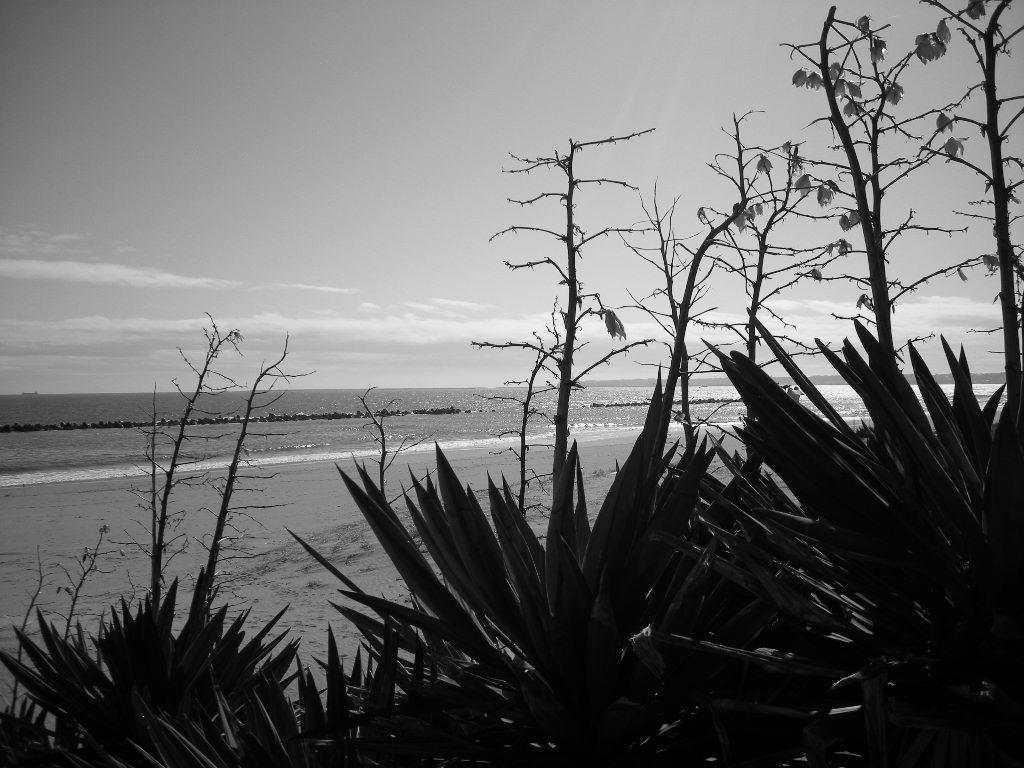 須々木海岸